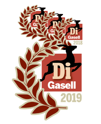 gasell-16-19