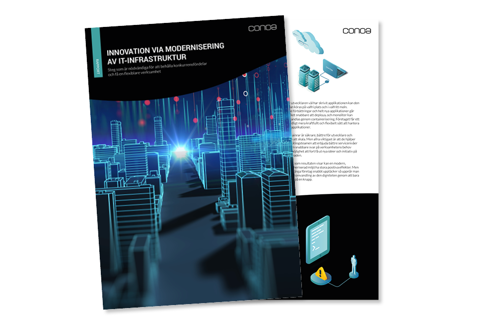 IT-modernisering_Conoa_Rapport